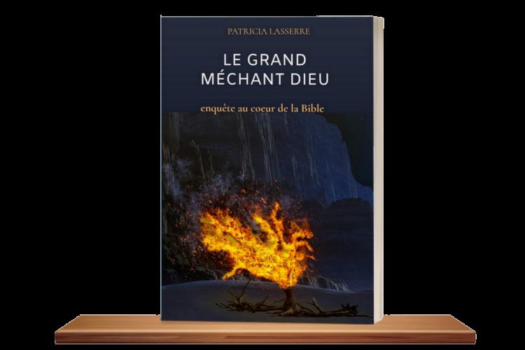livre le grand méchant dieu de Patricia Lasserre sur la véritable genèse du monothéisme