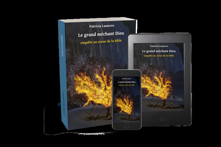 livre le grand méchant dieu, nquête au coeur de la bibl